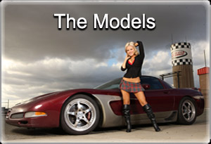 models with corvette